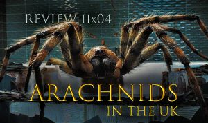 REVIEW 11×04 – Arachnids in the UK